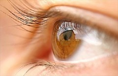 Occhio bionico: ridà la vista a malati di retinite pigmentosa