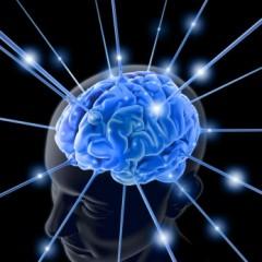 Ictus cerebrale: l'importanza della riabilitazione