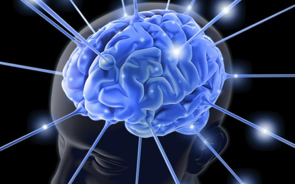 Cervello e sistema immunitario sono collegati da vasi linfatici