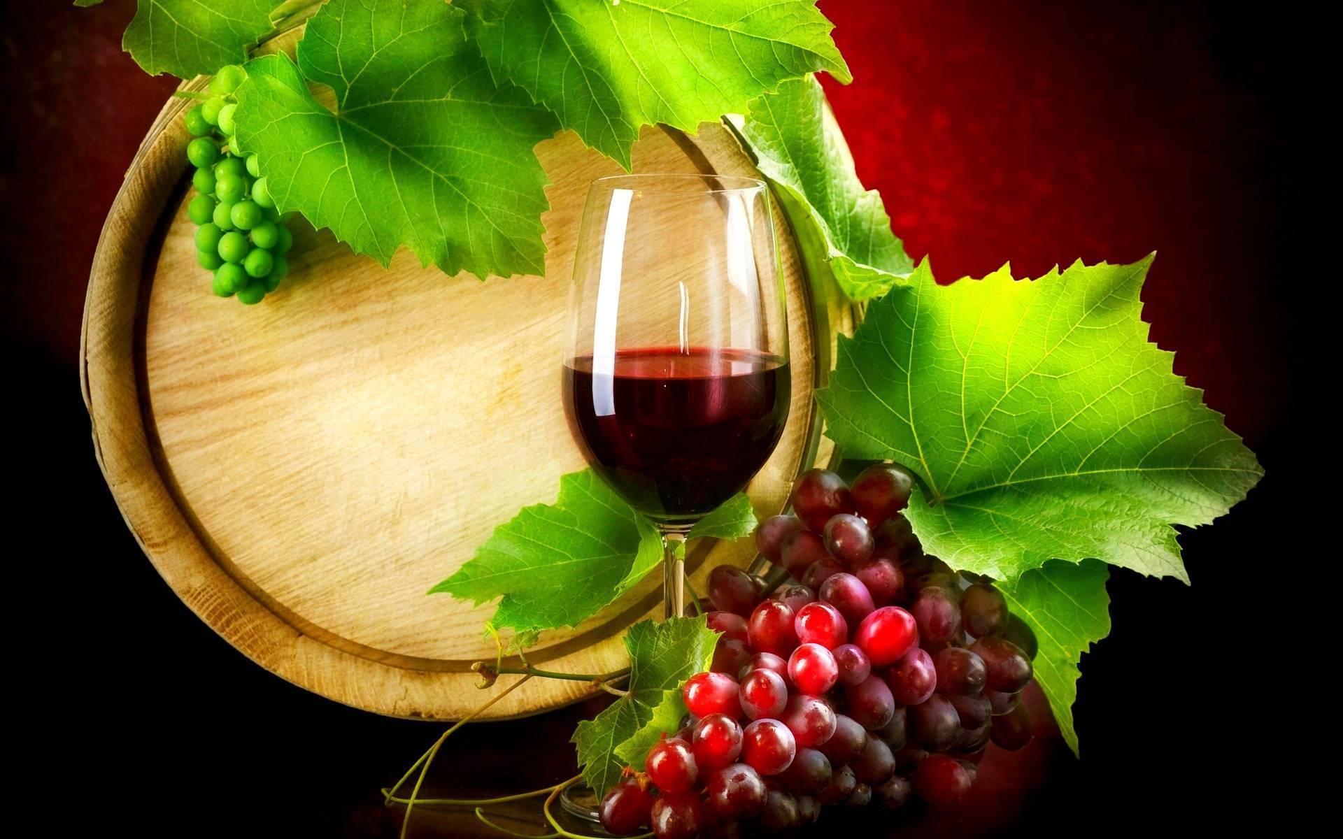 Vino e frutti di bosco ogni giorno: dimagrire con il resveratrolo