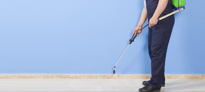 Come disinfestare una casa al meglio