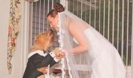 """Donna 29enne sposa il suo cane: """"Ora adottiamo un bambino"""""""
